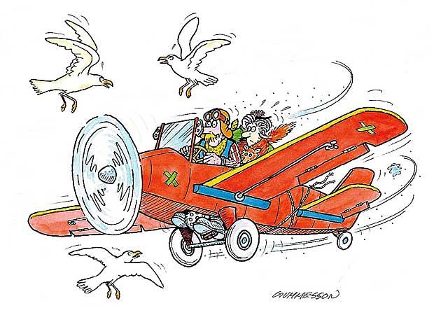 anflyger